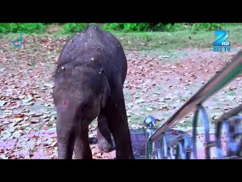 Lord Ganesha comes to Ganesh' rescue - Episode 39 - Bandhan Saari Umar Humein Sang Rehna Hai