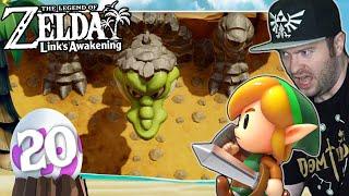 DungeonEINGANG ist ein BOSS?! (+Alle 50 Muscheln!) 🗡️ THE LEGEND OF ZELDA LINK'S AWAKENING #20