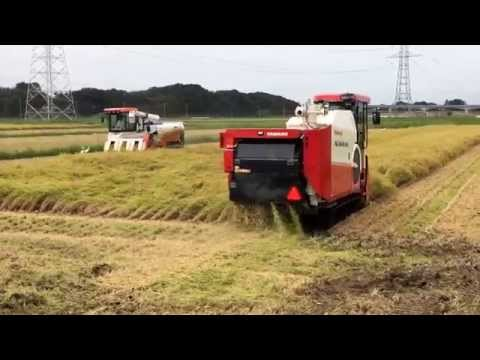 AG6114R  WR6100  HJ6120  稲刈り