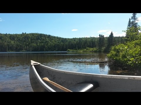 Canoe Camping, Fishing & Good Eating With Billy!