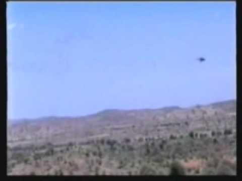 Eritrea went to war with all of its neighbors  ተዓገስ ገብራይ!