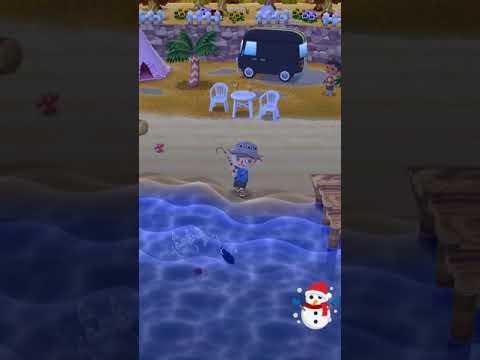 football fish live catch (Pocket Camp)
