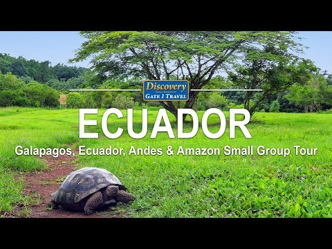 Discovery Tour Of The Galapagos, Ecuador, Andes & Amazon