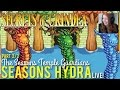 How to beat the Seasons Hydra in Secrets of Grindea - LIVE!