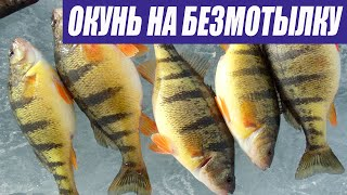 Зимняя рыбалка на безмотылку ДЕКАБРЬ 2020 Перволедье 2020 2021