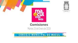 Comisiones / Concejo Municipal de Macul N° 94 / 15-01-2019