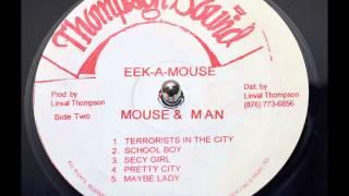 Eek-A-Mouse - Pretty City
