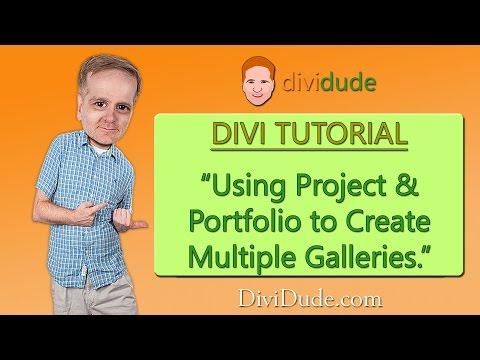 Divi Creating Multiple Galleries Using Project and Portfolio Tutorial