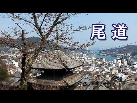 drawboard 日本 語