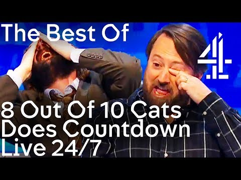 Best Of 8 Out Of 10 Cats Does Countdown | Live 24/7 Non-Stop Clips