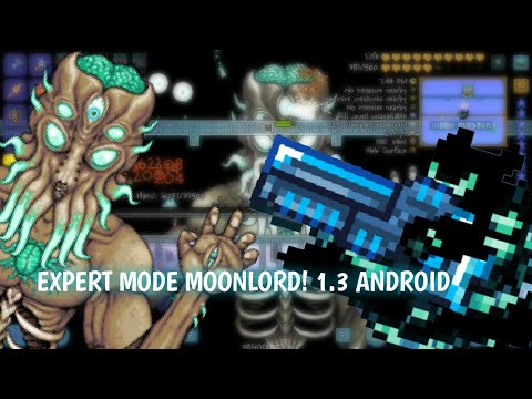 Terraria ANDROID 1.3 EXPERT MODE MOONLORD!