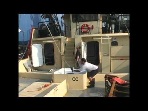 Oceans Fleet Fisheries - New Bedford, MA