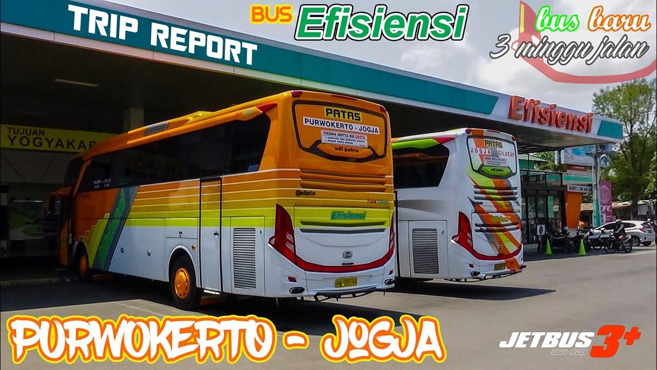 Trip Report Bus Efisiensi Jetbus 3 Purwokerto Yogyakarta Bis Baru 3 Minggu