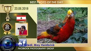 TOP 20 PHOTOGRAPHY VIDEO AWARD 23.06.18 | PHOTOGRAPHY PHOTOS