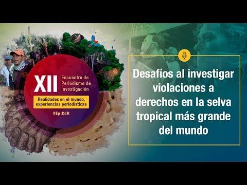 XIIEncuentro2019 - Desafíos al investigar violaciones a derechos en la selva tropical