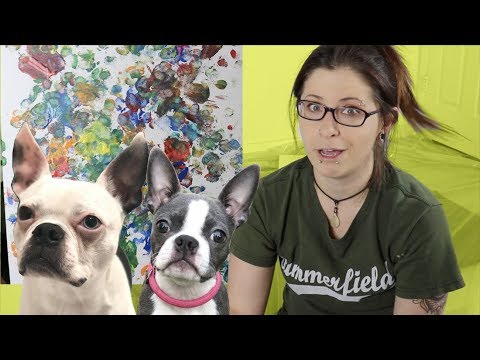 Letting my Boston Terrier dogs play with paint HUGE MESS