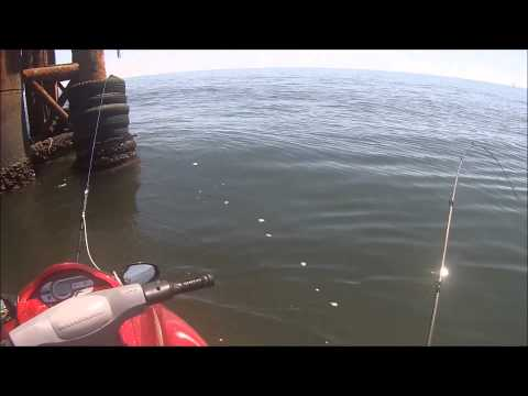 Texas Offshore Jet Ski Fishing - Matagorda, Tx