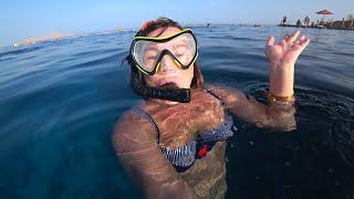 Рыбки и кораллы в отеле Sierra Египет урезанные 5 или полный набор удовольствий
