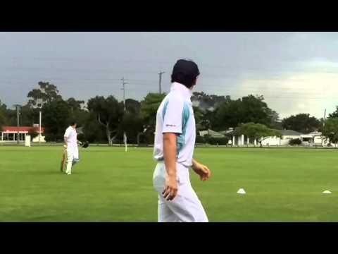 Lightning strike ignites tree at cricket match.