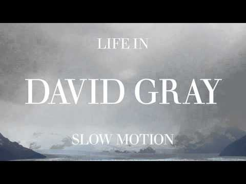 David Gray (+) Slow Motion