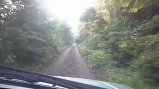大山周辺爽やかドライブ 舗装林道→ダート→草ボーボーで撤退
