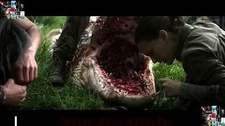 annihilation 2018 movie clip (fight with crocodile)