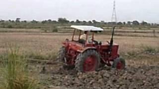 Rice crops preparation in jaffarabad balochistan