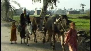 Organic Agriculture - Benefits for a Village