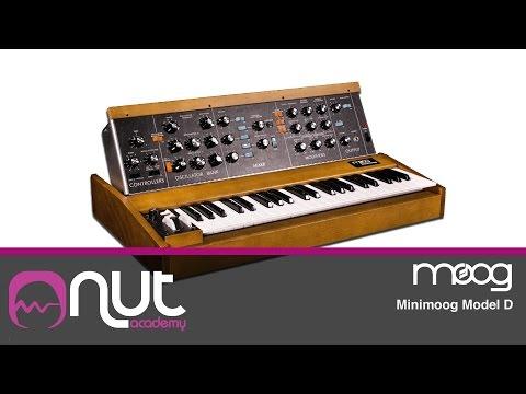 Minimoog model D  con Enrico Cosimi @Nut Academy.