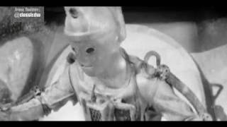 Special Feature - The Cybermen - Doctor Who - The Tomb of the Cybermen - BBC