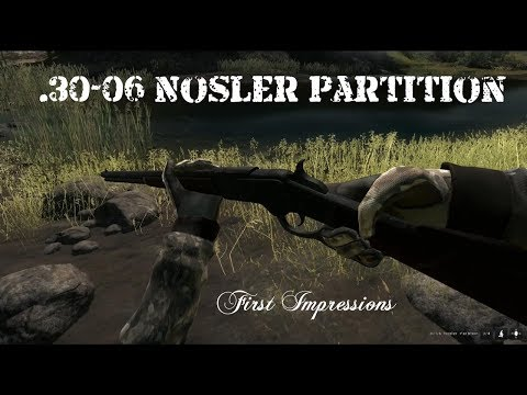 The Hunter - .30-06 Nosler Partition - First Impressions