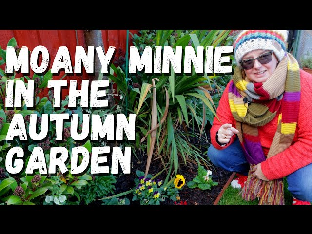 November garden tour | Autumn or Fall and our state of mind as gardeners