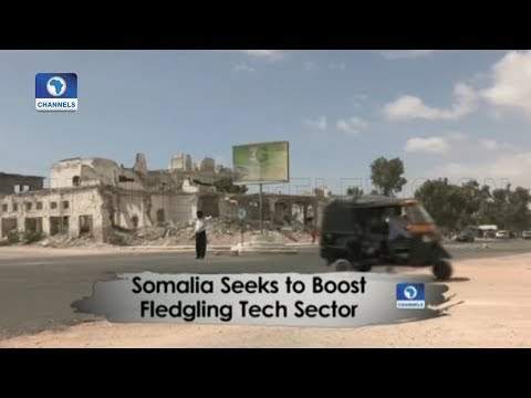 Somalia Seeks To Boost Fledgling Tech Sector | Africa 54 |