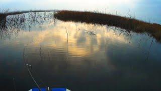 Ловля щуки по мелководью Рыбалка в ноябре Попал на раздачу ЩУПАКОВ