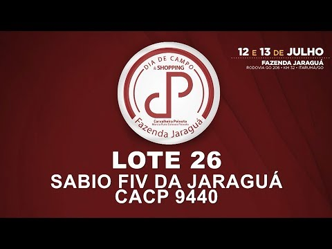 LOTE 26 (CACP 9440)