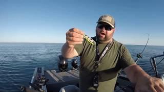 How to fish Salmon on Lake Michigan (Intro)