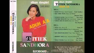 Download Lagu Titiek Sandhora Album Dangdut Aduh A A Biru Full Album Original mp3