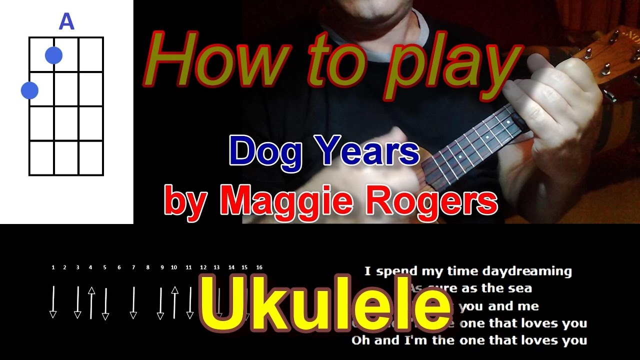 How to play dog years by maggie rogers ukulele youtube how to play dog years by maggie rogers ukulele hexwebz Choice Image