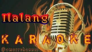 Gambar cover Ilalang Karaoke No Vocal (Koplo)