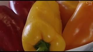 Секреты приготовления ароматных солений: аджика