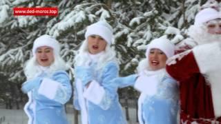 #ТОП Дед Мороз 2016 - Новогодние идеи(, 2015-12-02T09:40:24.000Z)