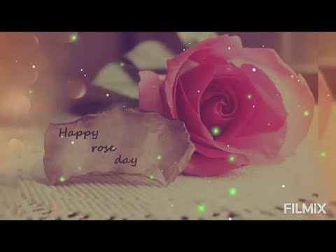 LOVE, YOU, JANU,image, ringtone,status, janu photo, wallpaper,hd,HD,pictures,pic,gift, gifts,MMS,hot