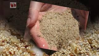 Отдых В Турции Пляж Памучак Pamucak Beach, остров Клеопатры
