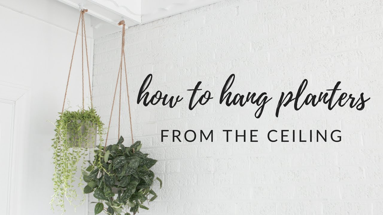 How To Hang Planters From A Ceiling