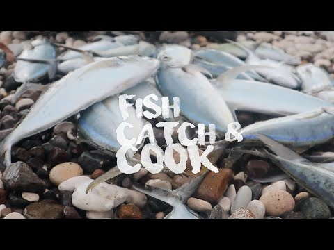 Fisherman Fish Catch & Cook | Outdoor Cooking In Jamaica
