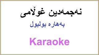 Kurdish Karaoke: Bahara Bulbul نهجمهدین غوڵامی ـ بههاره بولبول