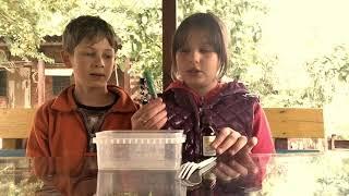 Рецепты лизунов,проверка. / Лизуны своими руками #3