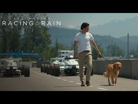The Art of Racing in the Rain | Fate/Fall | 20th Century FOX