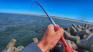 Спиннинг трещит Камбалиные дуплеты Сказочная морская рыбалка на камбалу