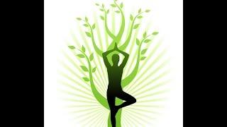 Упражнения для похудения живота, бедер, ног, рук и ягодиц